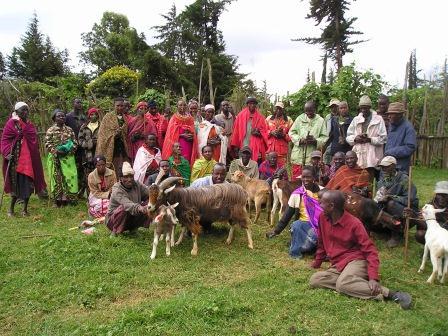 Lesogorol Dairy Goat Group