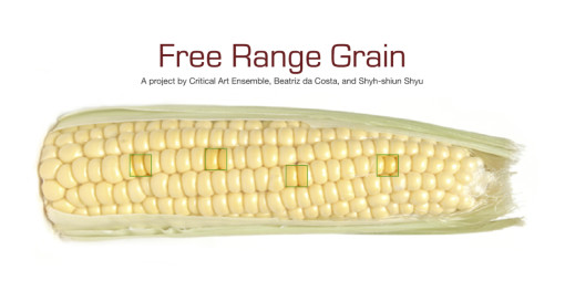 Fig-2-Free-Range-Grain-alt-a-510x263