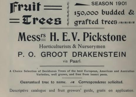 henkel1903-fruit-ad