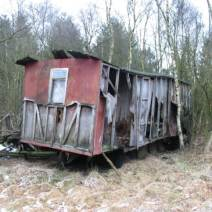 Figure 1. The standing remains of former homes around the now abandoned brown coal mine. Cultural and natural heritage grow together. Photo by Nathalia Brichet.