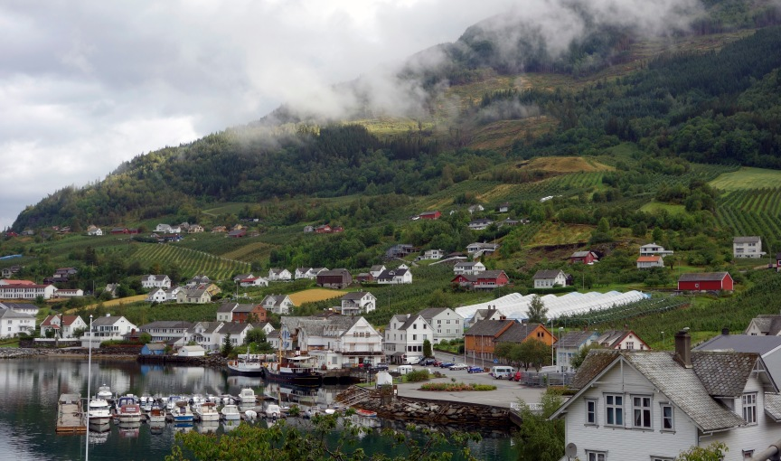 Figure 16. The village of Lofthus in western Norway. Apple plantations crawl up the slopes until these eventually become too steep. The fruit producers would do anything to expand their plantations, but will have to make do with increasing the yield on the acreage available in their effort to compete with cheaper imported fruit. For this reason, the authorities recently lifted a ban on imported fruit trees and shoots, which are sturdier and grow faster. To some, this is a timely rescue of the fruit trade, whereas others see it as a disastrous exposure to pests. Photo by Frida Hastrup.
