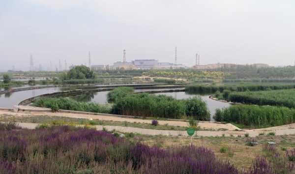 Figure 4. Lianshi Park, also known as Yongding River Wetland, near the Chinese megacity of Beijing. The park is an ecological restoration project aimed at ensuring biodiversity in the former industrial area along the Yongding River on the urban periphery. In the background is a disused steel mill, which has been shut down because of the pollution it caused. Photo by Jens-Christian Svenning.